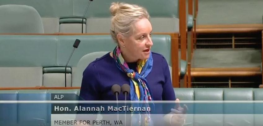 Alannah MacTiernan parliament